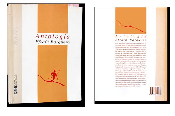 modele_book_antologia
