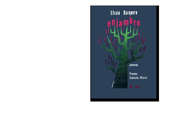 modele_book_enjambre